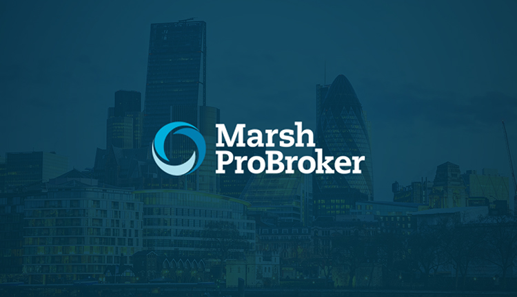 Marsh ProBroker Member